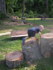 child playing on tree stumps
